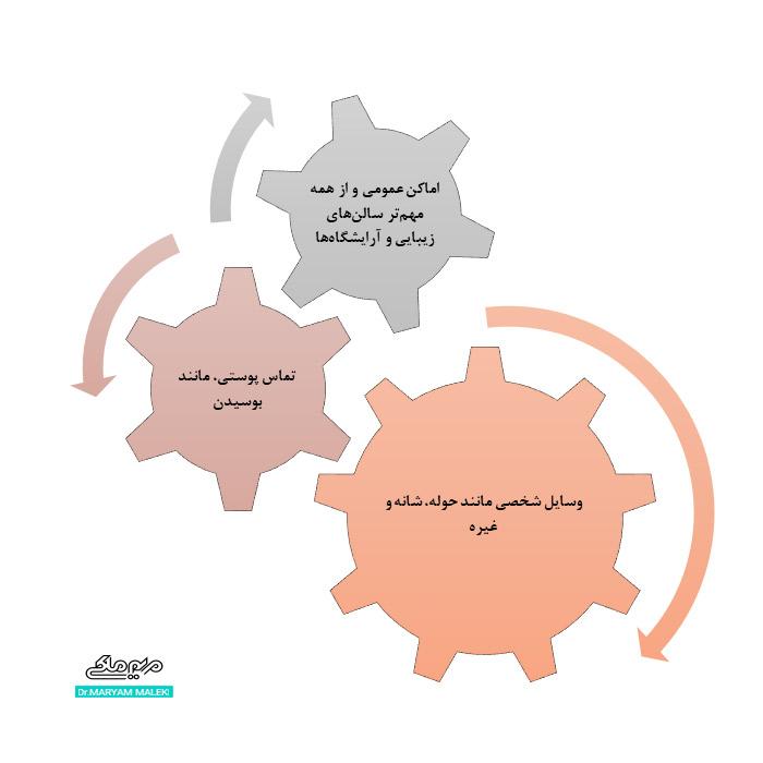 راههای انتقال انگل دمودکس