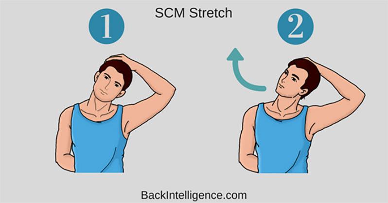 درمان درد گردن با حرکات کششی