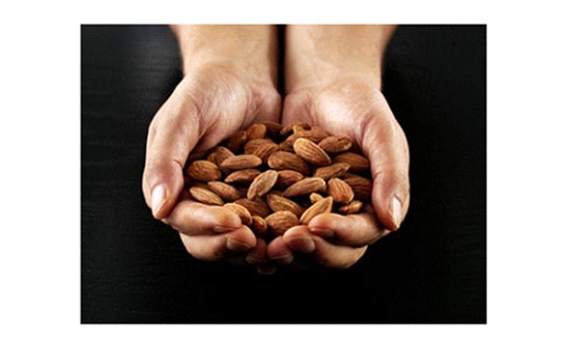 منابع پروتئین مانند مغزهای درختی