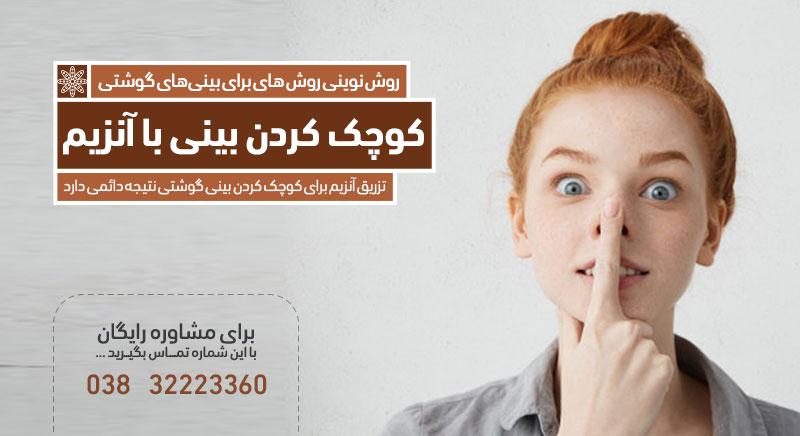 کوچک کردن بینی های گوشتی با آنزیم کلینیک دکتر پرستو خسروانی بهترین متخصص پوست، مو و زیبایی شهرکرد ایران اصفهان