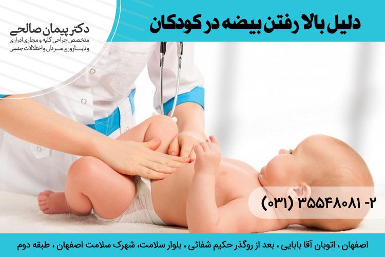 علت بالا رفتن بیضه در کودکان