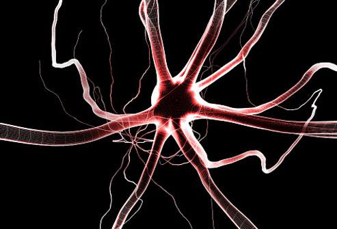 اختلالات ظریف انتقال دهنده های عصبی در فیبرومیالژیا