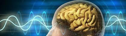 امواج مغزی در نوروفیدبک اصلاح میشود