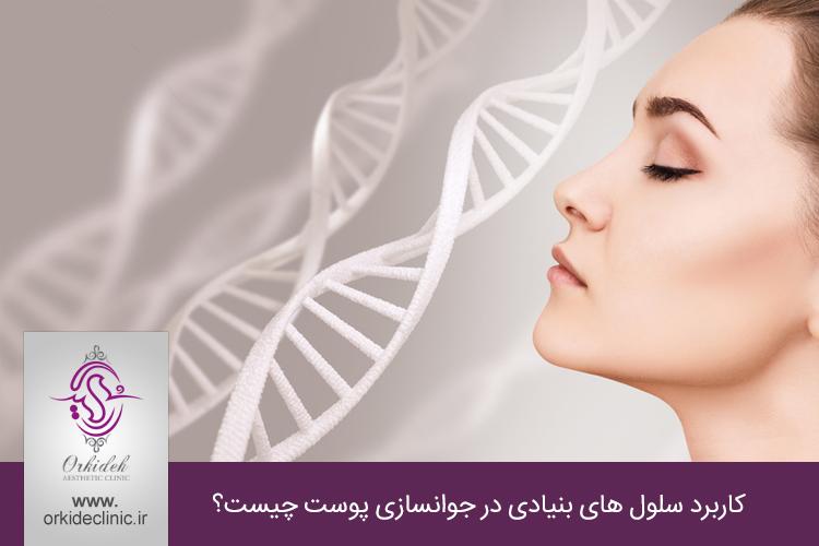کاربرد سلول های بنیادی در جوانسازی پوست
