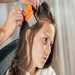 ابتلا به شپش سر و اگزما ، مهمترین بیماری های پوست و مو در دانش آموزان