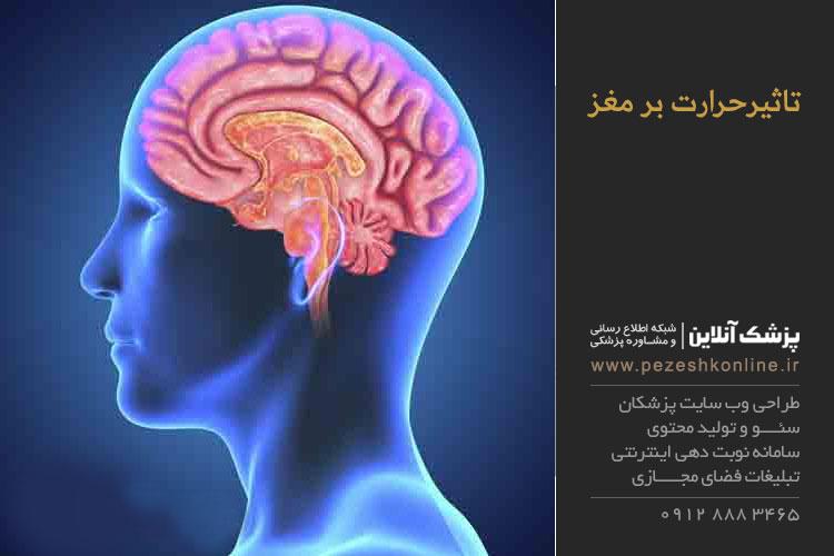 تاثیر درجه حرارت بر عملکرد مغز